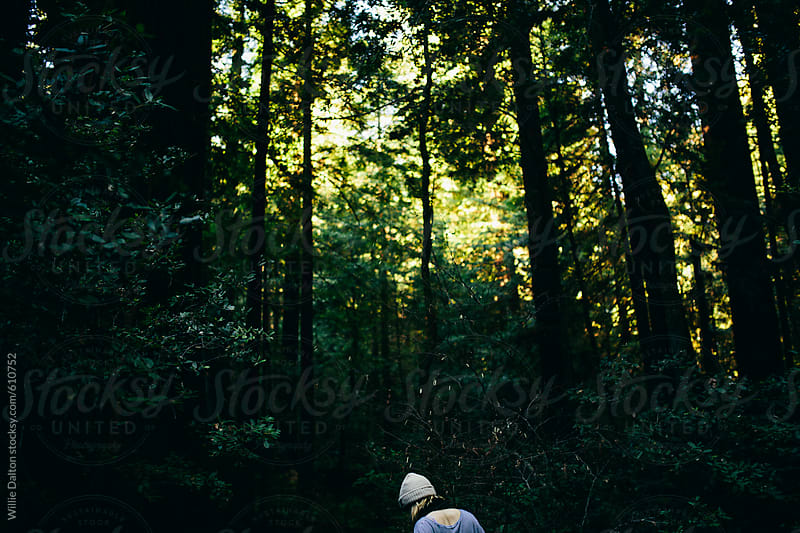 Young Woman Walking in a Moody Forest by Willie Dalton for Stocksy United