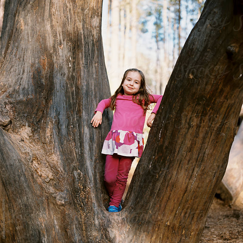 Cute young girl standing in tree by Jakob for Stocksy United