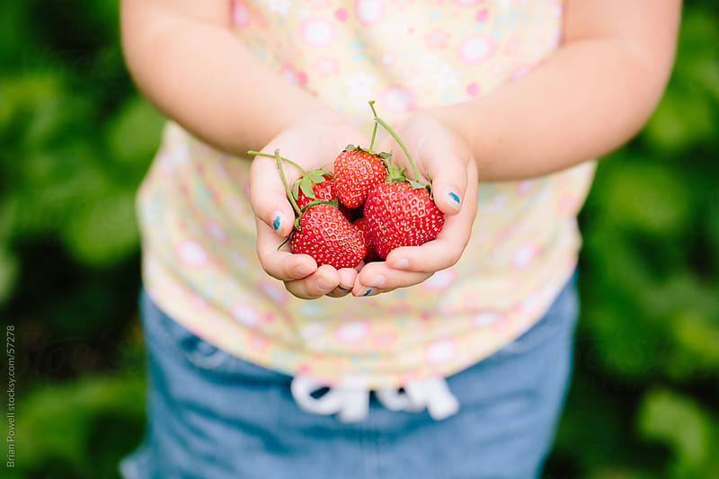girl with handful of fresh strawberries by Brian Powell for Stocksy United