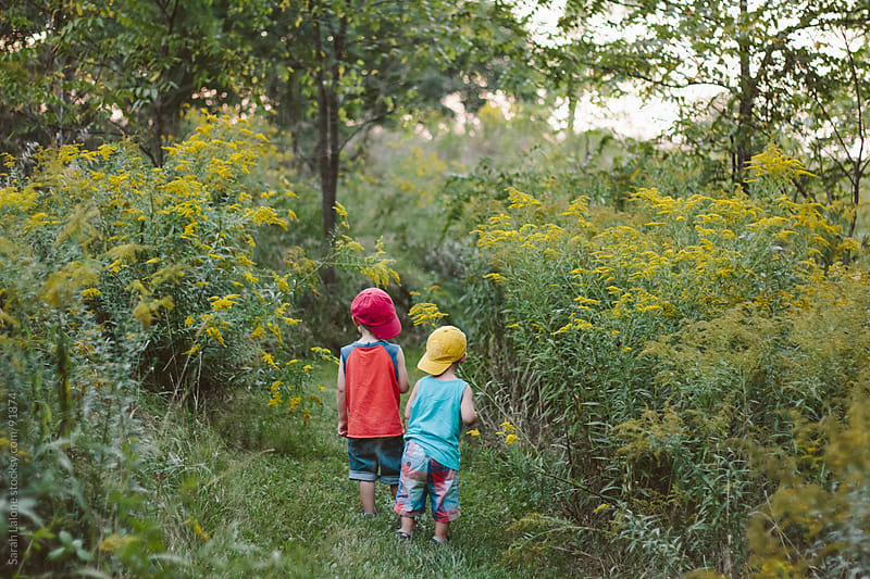 two little boys walking in a meadow by Sarah Lalone for Stocksy United