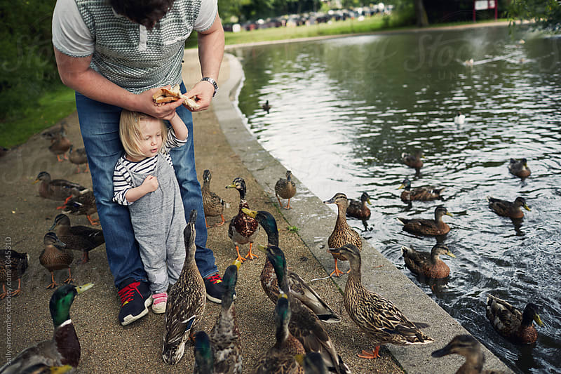 Father and daughter feeding the ducks at the park  by sally anscombe for Stocksy United