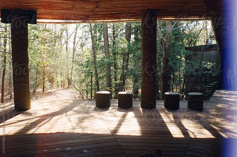 A film photo of wood veranda in the forest by Anna Malgina for Stocksy United