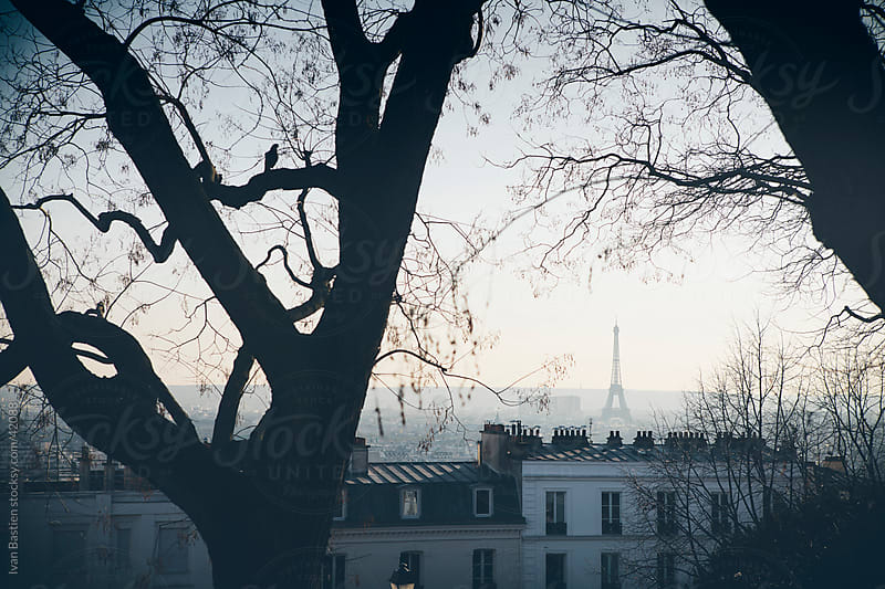 Paris skyline and bare trees by Ivan Bastien for Stocksy United