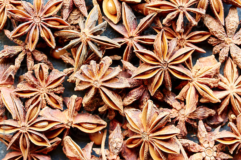 Star anise fruits and seeds by Harald Walker for Stocksy United