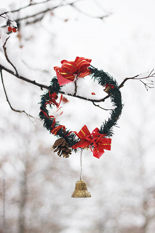 Christmas wreath hanging on a tree by Jovana Rikalo for Stocksy United