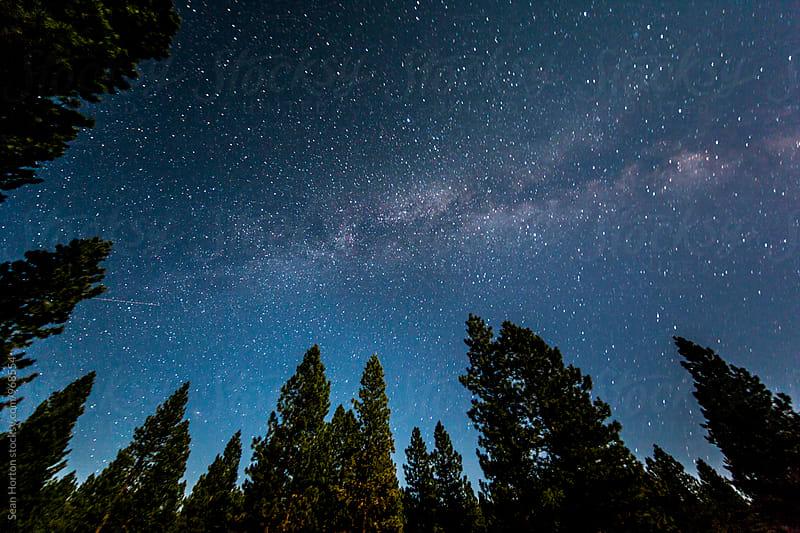 PNW Night Sky by Sean Horton for Stocksy United