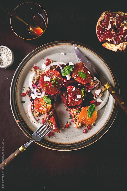 Fresh blood orange beet salad by Sophia van den Hoek for Stocksy United