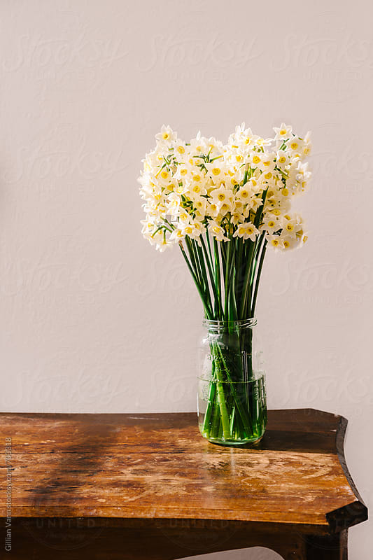 jonquils in afternoon light on a wooden table by Gillian Vann for Stocksy United