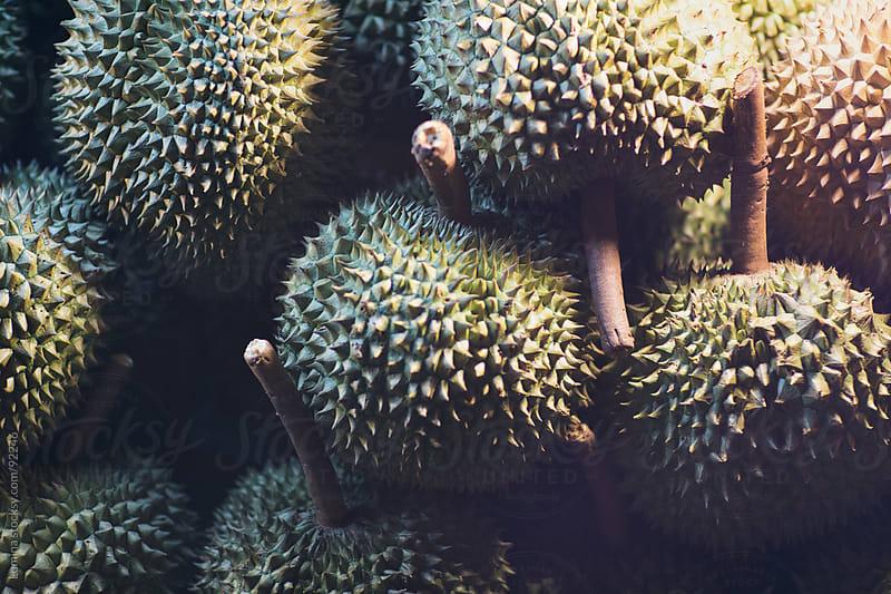 Durian by Lumina for Stocksy United