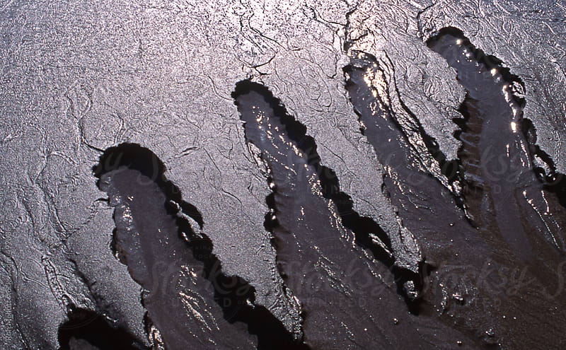 closeup of erosional beach patterns in dark wet sand morning on the Pacific coast  by Ron Mellott for Stocksy United