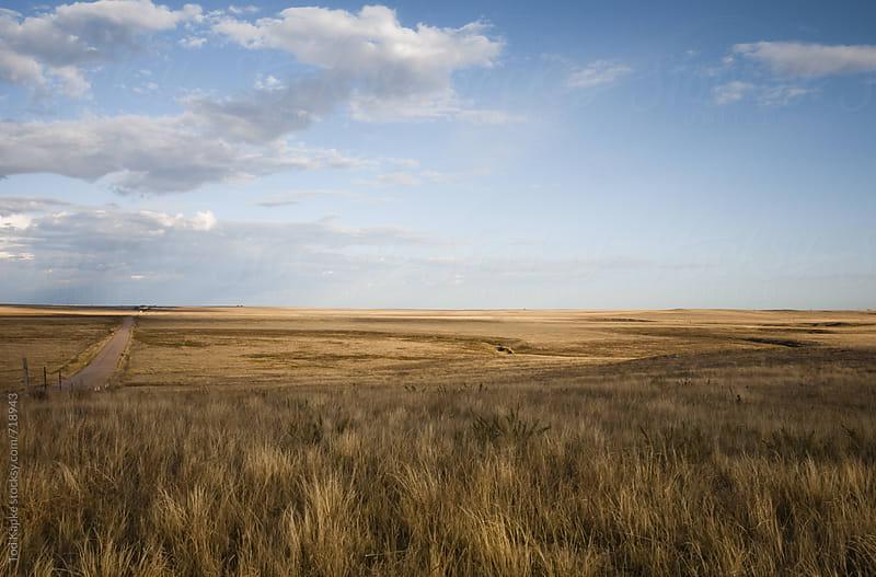 Pawnee National grasslands landscape at dusk by Tod Kapke for Stocksy United