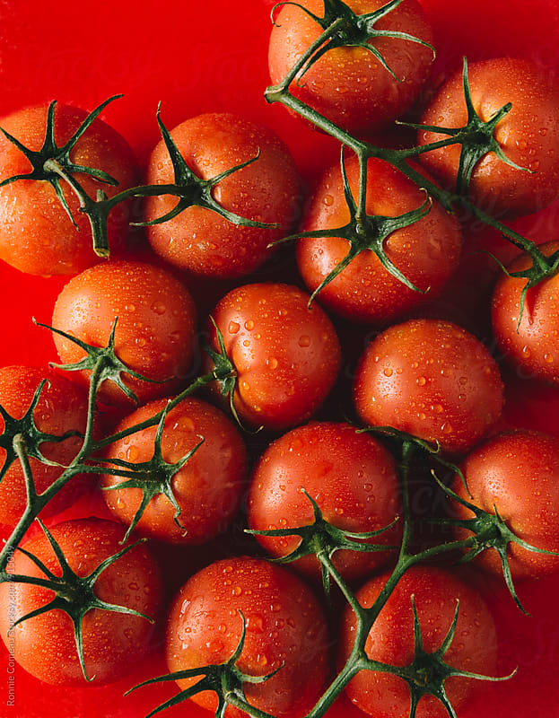 Fresh Washed Tomatoes From Above by Ronnie Comeau for Stocksy United