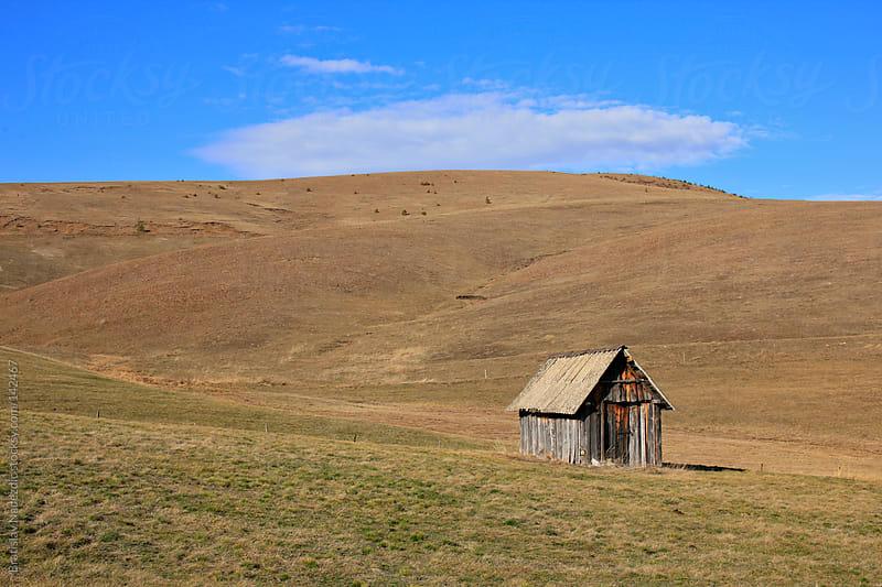 Little wooden house by Bratislav Nadezdic for Stocksy United
