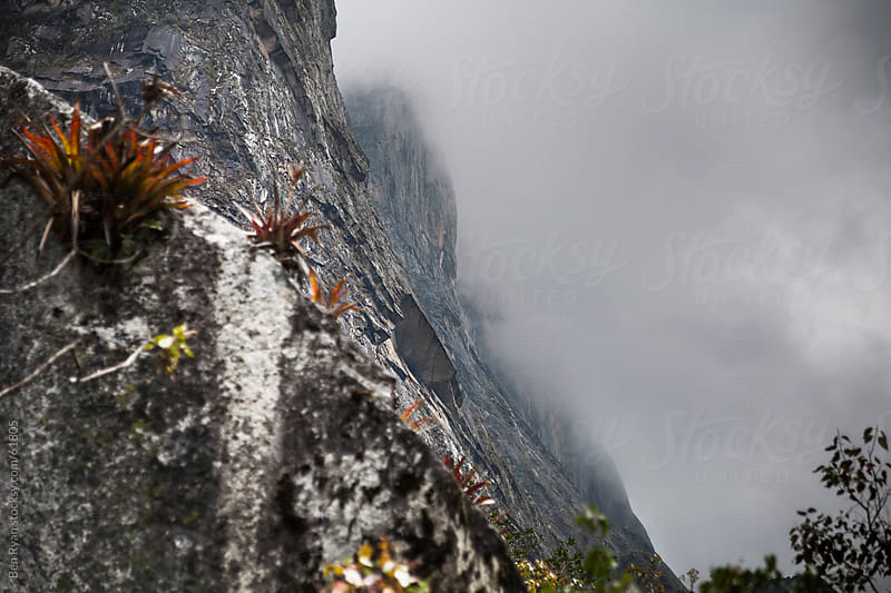 Sheer granite cliffs disappearing into cloud by Ben Ryan for Stocksy United