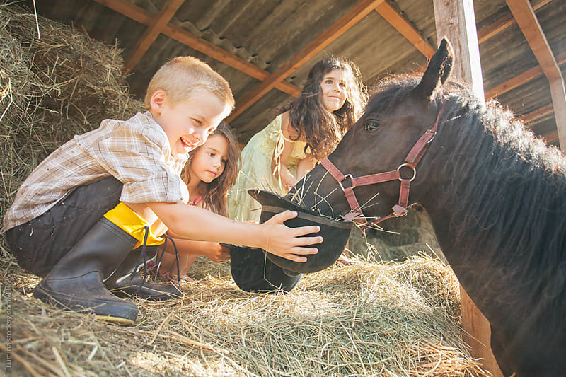 Kids Petting a Horse at a Farm by Lumina for Stocksy United