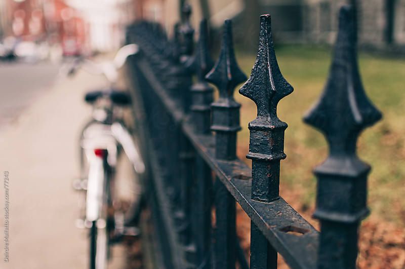 wrought-iron fence with blurred background by Deirdre Malfatto for Stocksy United