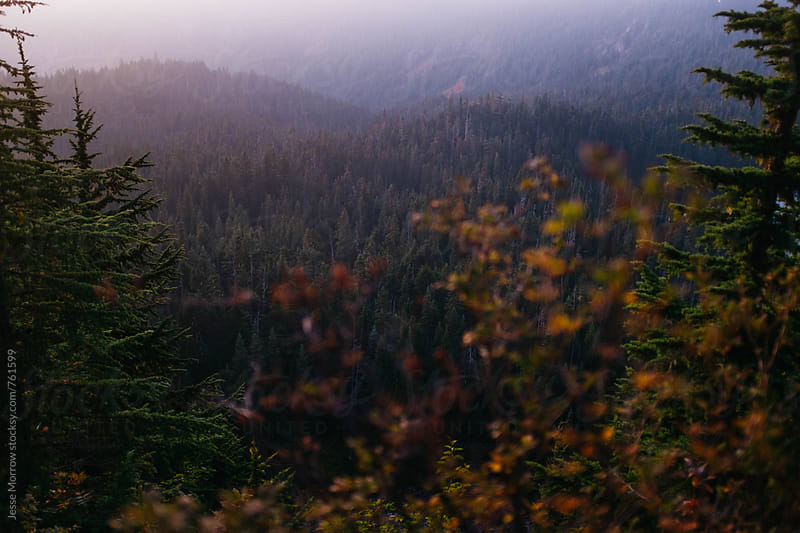 sunset in cascade mountain range by Jesse Morrow for Stocksy United