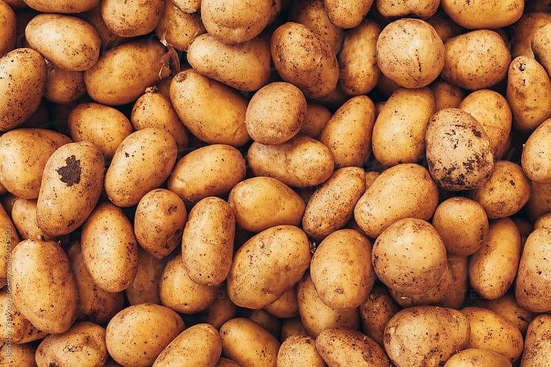 Potatoes by Borislav Zhuykov for Stocksy United