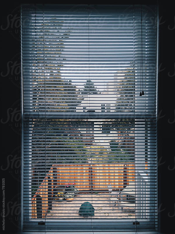 Rear window by michela ravasio for Stocksy United