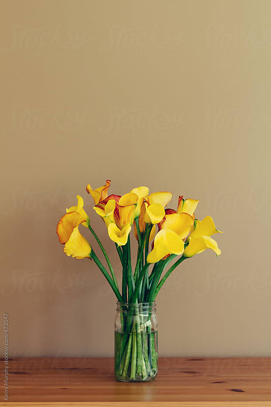 Yellow calla lilies in glass jar on wooden table by Kerry Murphy for Stocksy United