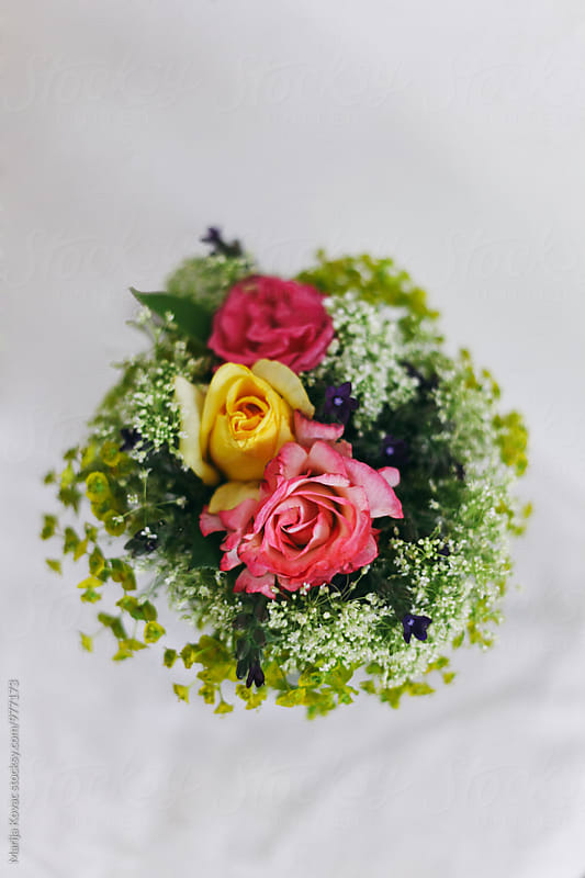 Pink and yellow roses, from above  by Marija Kovac for Stocksy United