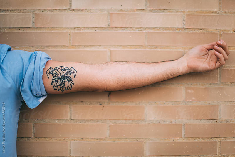 Tattoo on arms by Javier Pardina for Stocksy United
