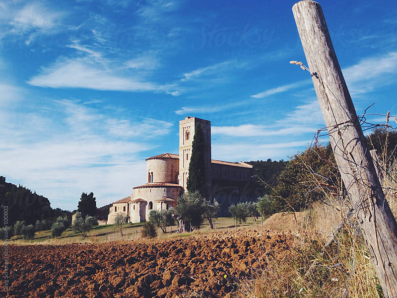 Views of landscape and nature in the Tuscany region of Italy by Greg Schmigel for Stocksy United