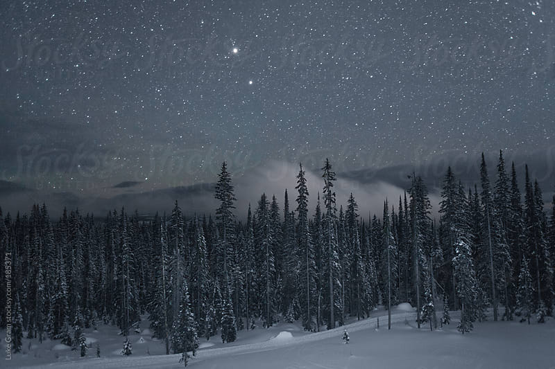 Stars at Big White by Luke Gram for Stocksy United
