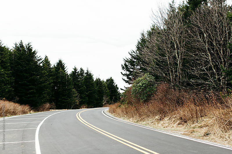 Blue Ridge Parkway Road by Brett Donar for Stocksy United