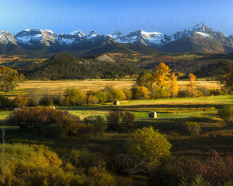 Colorado Autumn by Casey McCallister for Stocksy United