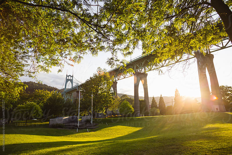 Cathedral Park, below the St. Johns Bridge in Portland by michela ravasio for Stocksy United
