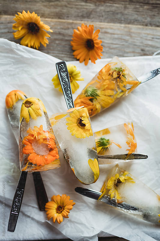 Popsicle with marigold by Tatjana Ristanic for Stocksy United