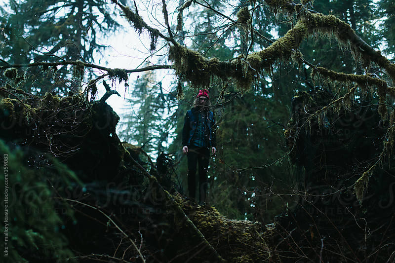 Forest Explorer by luke + mallory leasure for Stocksy United