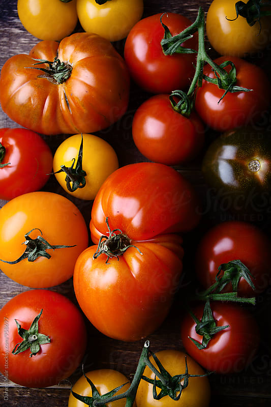 Heirloom or Heritage tomato's:  by Darren Muir for Stocksy United