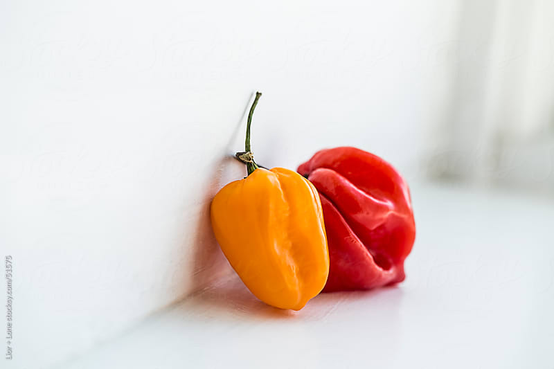 red and yellow habanero chilies leaning on wall by Lior + Lone for Stocksy United