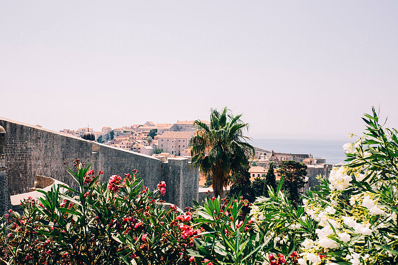 Old city walls in Dubrovnik by Maja Topcagic for Stocksy United