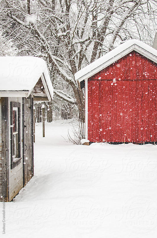 Red barn and small shack on a snowy day by Lindsay Crandall for Stocksy United