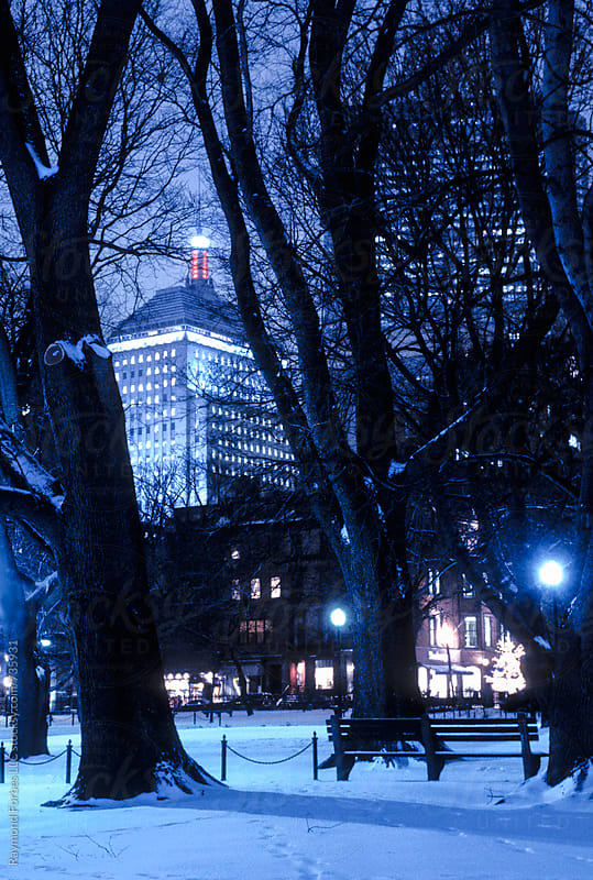 Winter's Night in Boston Public Garden by Raymond Forbes LLC for Stocksy United