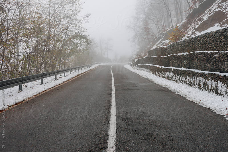 Road passing through the forest and fog in the winter by Dimitrije Tanaskovic for Stocksy United