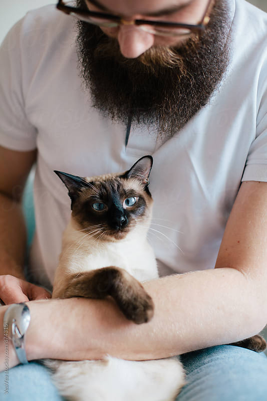 Man holding adorable siamese cat  by Marija Mandic for Stocksy United