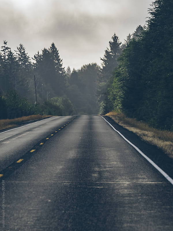 empty highway through the forest in WA by unite images for Stocksy United