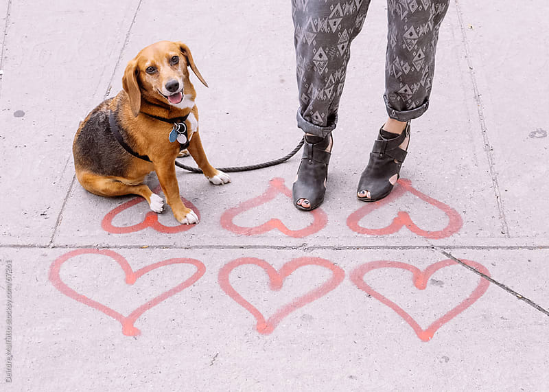 A woman and her dog stand on hearts on sidewalk by Deirdre Malfatto for Stocksy United