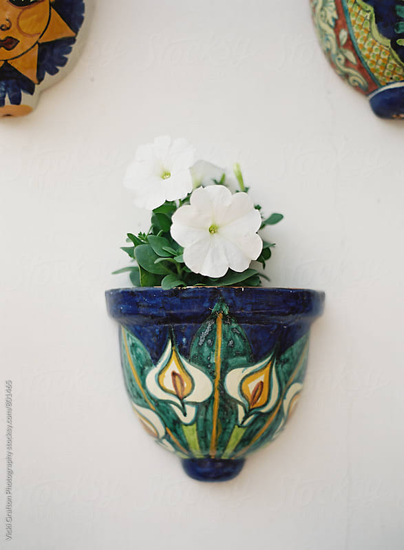 Ceramic Wall Vase  by Vicki Grafton Photography for Stocksy United