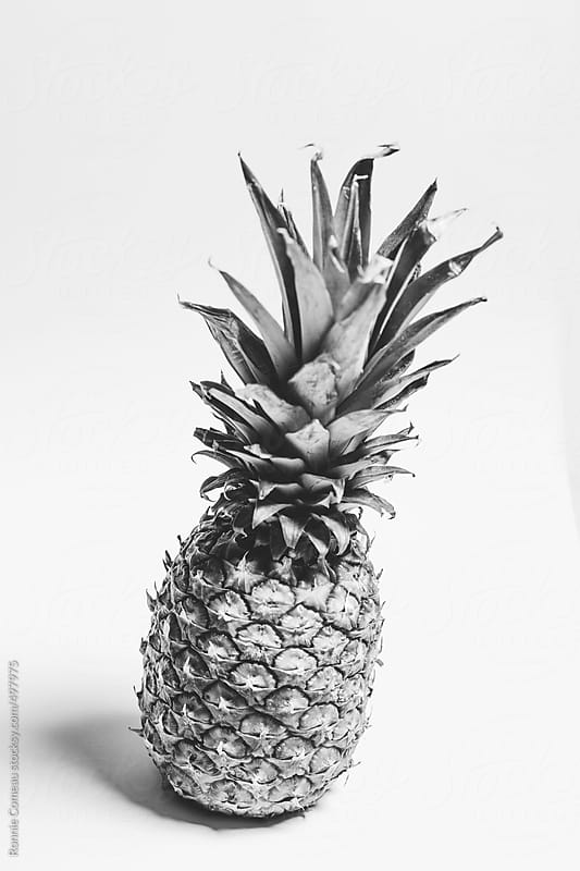 Pineapple Portrait by Ronnie Comeau for Stocksy United