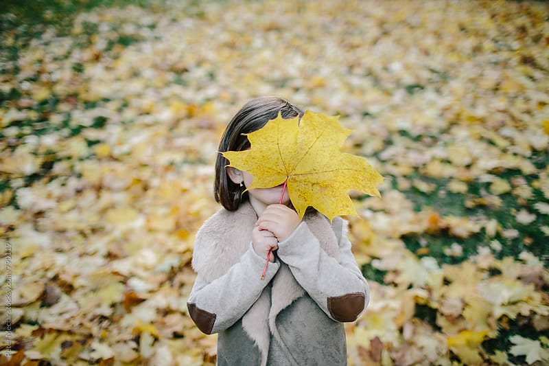 Little girl is playing in autumn park by Peter Meciar for Stocksy United