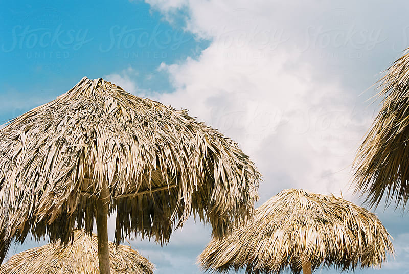Palapas / umbrellas on a sunny afternoon with blue skies by Joey Pasco for Stocksy United