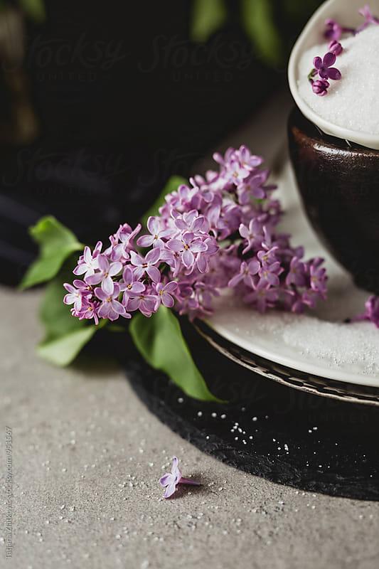 Lilac sugar by Tatjana Zlatkovic for Stocksy United
