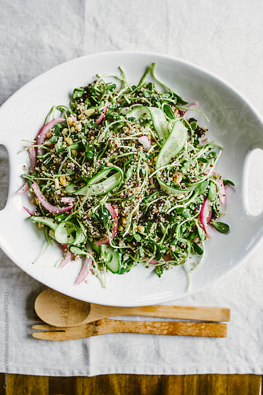Quinoa Salad Platter by Cameron Whitman for Stocksy United
