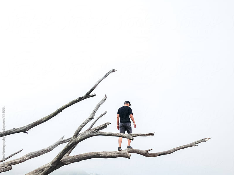 Man standing on tree branches by Daniel Kim Photography for Stocksy United