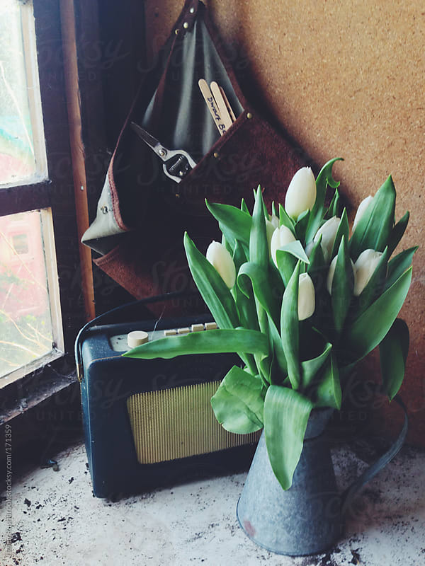Potting shed still life by Helen Rushbrook for Stocksy United